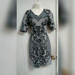 Anthropologie Baraschi sheath dress